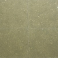 24x24 Seagrass Honed Limestone Tile