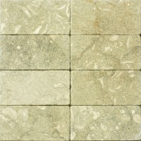 3x6 Seagrass Tumbled Limestone Tile