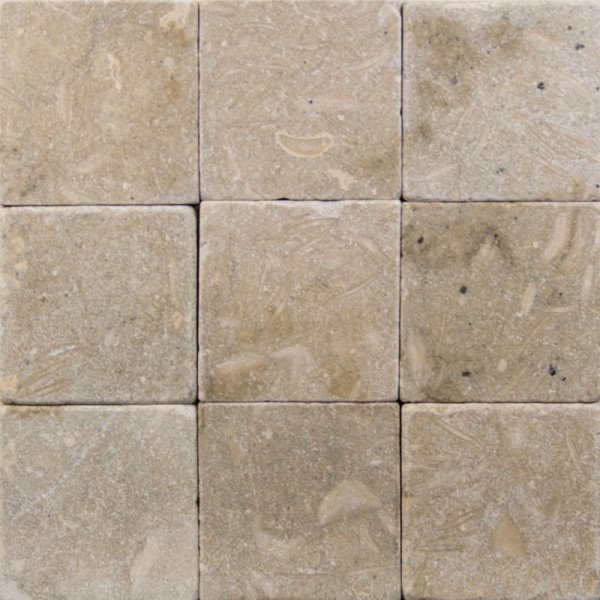 4x4 Seagrass Tumbled Limestone Tile