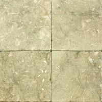 6x6 Seagrass Tumbled Limestone Tile