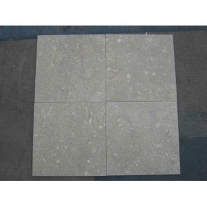 12x12 Seagrass Honed Limestone Tile