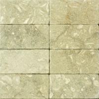 3x6 Seagrass Tumbled Limestone Tile